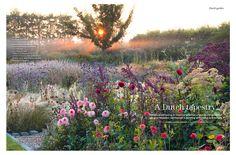 jurgen becker garden, landscaping, landscape architecture, gardening, flowers, perennial