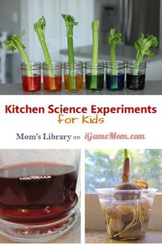 6 Kitchen science experiments using simple materials with easy set ups, that even young children can do.