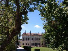 Villa Foscarini Rossi in tutto il suo splendore, incorniciata dagli alberi secolari del parco. #villevenete #location #matrimonio