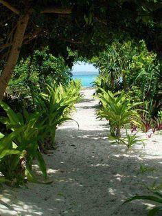 Mystery Island #2 - Mystery Island, Malampa - Vanuatu