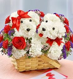 Lucky in Love™- a-DOG-able® ~ Valentine flower arrangement of fresh white carnations, red roses, mini carnations, statice, waxflower and variegated pittosporum ($75-$90) | from 1-800-Flowers