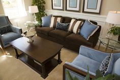 Living room interior design in dark brown and blue.  One dark brown sofa with two blue armchairs around one dark brown coffee table.