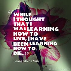 While I thought that I was learning how to live, I have been learning how to die. -Leonardo da Vinci  #quotes #Live #Die #Thought #How #Been #While  For #LeonardodaVinci quotes visit: http://www.uberquotes.net/quotes/authors/leonardo-da-vinci For #Death quotes visit: http://www.uberquotes.net/quotes/topics/death
