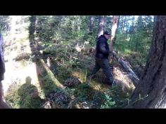 VIDEO OF BIGFOOT AND DOGMAN TOGETHER - YouTube