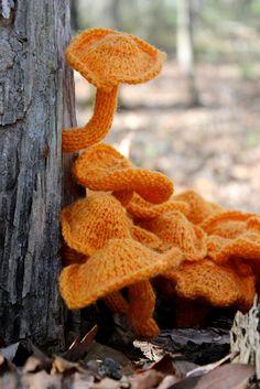 Woollen Knitted Fungi Decomposition: Riot - Bromeleighad Fiber Art