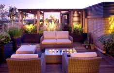 Large Roof Garden | Charlotte Rowe Garden Design