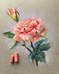 La imagen puede contener: planta y flor Soft Pastel Art, Chalk Pastel Art, Pastel Artwork, Oil Pastel Paintings, Oil Pastel Drawings, Pastel Floral, Art Drawings Sketches, Chalk Pastels, Oil Pastels