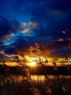 .sunrise