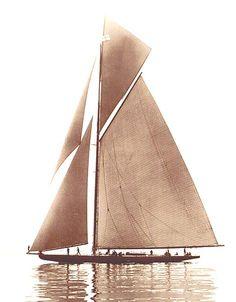 beautiful sepia tone print of a sailboat. Bateau Yacht, Classic Yachts, Classic Sailing, Remo, Yacht Boat, Sail Away, Jolie Photo, Boat Plans, Wooden Boats