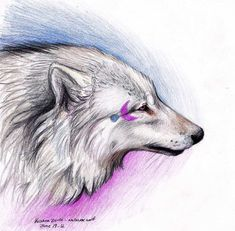 Moon White Wolf by *NatsumeWolf on deviantART