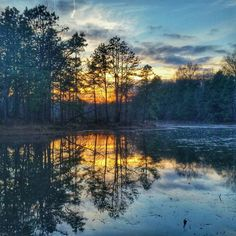 By florafaunafae: #Blue and #Purple. #Reflections. #Nature #NatureTrail #Maryland #Fall #Autumn #NaturePreserve #Sunset #HDR #Hiking #Photography #Outdoors #OutdoorLife #Pond #Leaves #Landscape #Scenic #EarthCapture #landscape #contratahotel