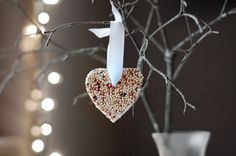 DIY Bird Seed Ornaments (for outdoor use)