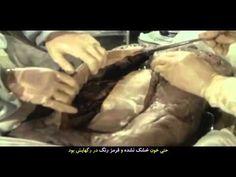 Lady of Dai mummy - short documentary snippet