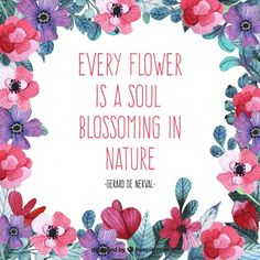 24 Best Quotes About Flowers Images Words Frases Thoughts