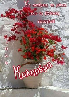 Good Morning, Christmas Wreaths, Holiday Decor, Inspiring Sayings, Buen Dia, Bonjour, Good Morning Wishes