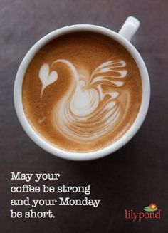 May your coffee be strong and your Monday be short - Monday Mantra from Lilypond