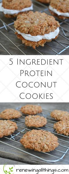 Protein Cookies 5 Ingredient Protein Coconut Cookies- gluten free, grain free dairy from vegan and paleo healthy cookies! These are amazing made with coconut flakes and sunflower seeds! Gluten Free Cookies, Healthy Cookies, Gluten Free Baking, Healthy Sweets, Gluten Free Desserts, Healthy Baking, Healthy Snacks, Vegan Protein Cookies, Low Carb Dessert