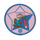 Guide Hobbies Badge - 2013 onwards