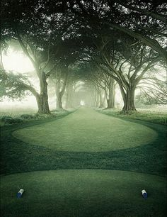 Erik Almås. Golf landscape 2015 #onlyart_photo #golf #grass #green #fog #mist #mood #colour #photo #art #onlyart