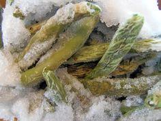 How to prevent freezerburn