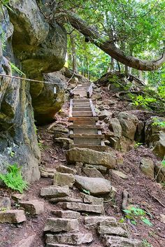 Hiking the Bruce Trail in Ontario: Limehouse, Devil's Pulpit and Rattlesnake Point. This is the oldest and longest marked trail in Canada. Places To Travel, Places To See, Alberta Travel, Ontario Parks, Ontario Travel, Canada Destinations, Parks Canada, Canadian Travel, Visit Canada