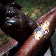 @sosacigars Sosa Classic Maduro #cigar #cigarchat #cigarreview www.RobbyRasReviews.com