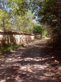 Path-Camino