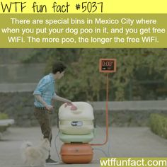 Get a free WiFi for dog poo - WTF fun facts - my family lives there and they never told me about this