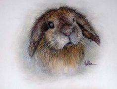 Valda Fitzpatrick Bunny Rabbit
