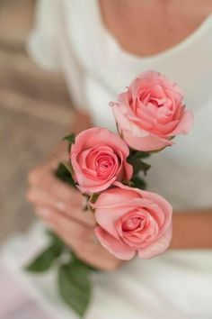 charm of ana rosa . X ღɱɧღ Flowers For You, Love Flowers, My Flower, Flower Power, Holding Flowers, Coming Up Roses, Love Rose, Rose Cottage, Girly Girl