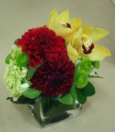 This is a cube vase floral arrangement that features red dahlias, yellow cymbidium orchids and mini-green hydrangea.  See our entire selection at www.starflor.com.  To purchase any of our floral selections, as gifts or décor, please call us at 800.520.8999 or visit our e-commerce portal at www.Starbrightnyc.com. This composition of flowers is generally available for same day delivery in New York City (NYC). SQ197