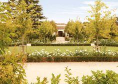 El último jardín de Silva