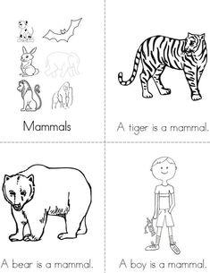 Mammals Mini Book - Sheet 1 - My list of the most beautiful animals Montessori Science, Preschool Lessons, Kindergarten Worksheets, Kindergarten Activities, Writing Activities, Science Writing, Animal Activities, Reptiles, Mammals