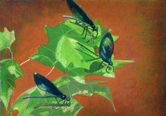 Three Dragonfly by JulieToffoloART on Etsy