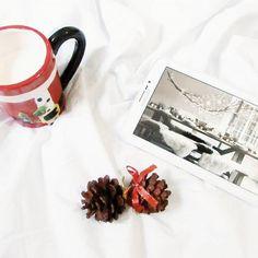Olá internet!!! Tem post novo no blog, com idéias para a decoração da mesa de natal! 😆 www.stragonapolina.com
