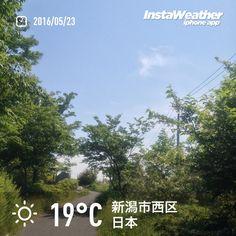 おはようございます! やや暑い日差しのもと、一週間のスタートです〜♪