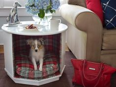 http://blog.diynetwork.com/maderemade/2014/05/29/5-fabulous-upcycled-pet-beds/