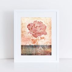 rose  10x8 limited edition print floral by creativemonsoons