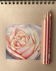 Hard Drawings, Art Drawings Sketches Simple, Realistic Drawings, Colorful Drawings, Cool Drawings, Abstract Pencil Drawings, Colored Pencil Artwork, Coloured Pencils, Color Pencil Art