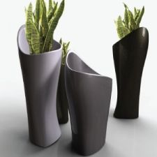 We are providing latest and beautiful indoor plants and designer pots as well. We are having a large range in them.