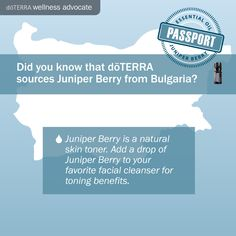 doTerra Social Media - Bulgarian Juniper Berry