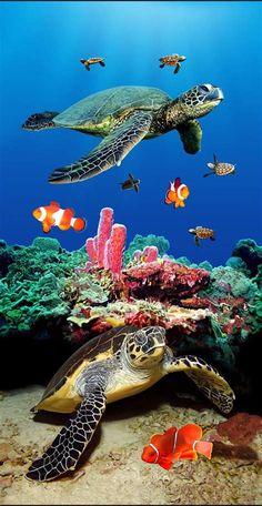 Underwater Animals, Underwater Painting, Sea Life Art, Ocean Life, Animals Tattoo, Sea Turtle Pictures, Sea Turtle Art, Sea Turtles, Beautiful Sea Creatures