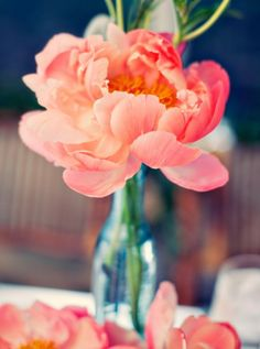 pink peony repined by Every Bloomin' Thing #iowacity #peony