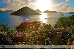 tortola british virgin islands   Tortola, British Virgin Islands