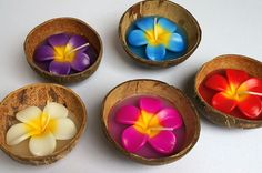 candles wholesale   Candle in Coconut Shell is made in Thailand, we're do a wholesale ...