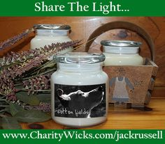 We are excited to introduce our new line of Jack Russell candles at charitywicks.com. You can select from six wonderfully-scented varieties, a four-pack sampler or collect all six unique candles – or six of just one scent, depending on your preference! Just order online or via fax, mail or phone call to have them delivered to your door; a portion of the proceeds above the distributor's cost will go directly to the rescue.