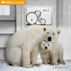 STOP global warming! The black and white poster shows a female ice bear and her baby looking desperately back at us. Visit our Mission Earth category. Earth Poster, Do It Yourself Furniture, Black And White Posters, Comic Styles, Cool Posters, Global Warming, Habitats, Gifts For Kids, Poster Prints