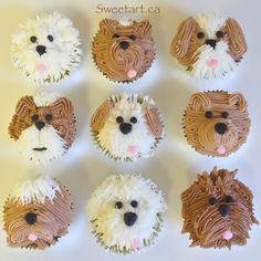 Planning a kids' birthday party or a baby shower? Here are some cute cupcakes that will be a hit. From barnyard animals to jungle themes to cat and puppy cupcakes, there are a ton of choices to have fun with! Puppy Cupcakes, Puppy Cake, Animal Cupcakes, Cupcakes Kids, Puppy Birthday Parties, Puppy Party, Dog Birthday, Birthday Cakes For Kids, Puppy Birthday Cakes