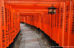 """The impressive entry of Red Torii """"gates"""" that lead to the Fushimi Inari Taisha Jinja.  This awe inspiring Shinto Shrine is dedicated to the Inari Kitsune Spirit.  It's located in the town of Fushimi-ku, which is about 2 kilometers southeast of world-renowned Kyoto, Japan."""