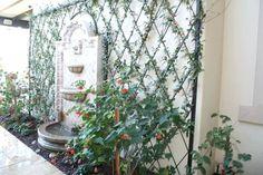 Decorating trends 2019 best garden trellis projects ideas and wall trellis ideas garden wall trellis ideas . Metal Trellis, Wall Trellis, Garden Trellis, Wire Fence, Iron Wall, Amazing Gardens, Wall Design, Summer Wedding, Garden Design